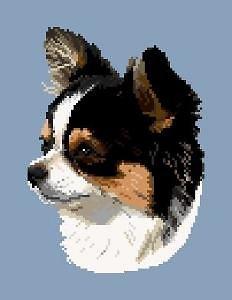 Chihuahua V diagramme noir et blanc .pdf
