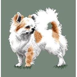 Chihuahua VI diagramme noir et blanc