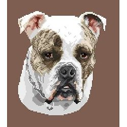 Continental bulldog diagramme noir et blanc