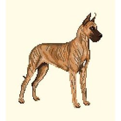 Dogue allemand diagramme couleur .pdf