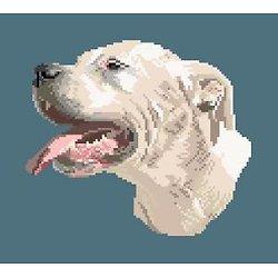 Dogue argentin diagramme noir et blanc