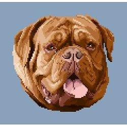 Dogue de Bordeaux diagramme couleur