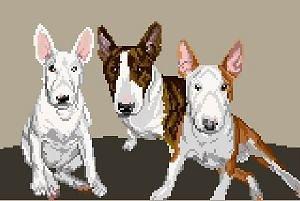 Famille de bulls terriers diagramme noir et blanc