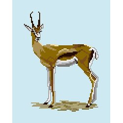 Gazelle diagramme couleur