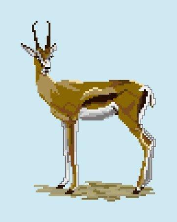 Gazelle diagramme couleur .pdf