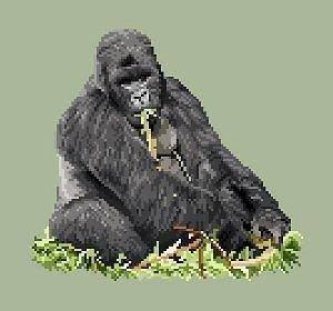Gorille diagramme couleur