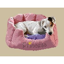 Jack russell III diagramme couleur