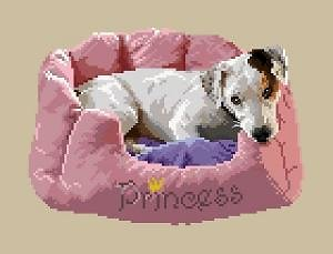 Jack russell III diagramme couleur .pdf