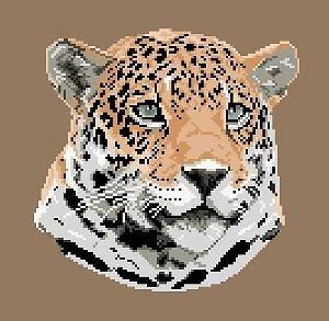 Jaguar diagramme noir et blanc