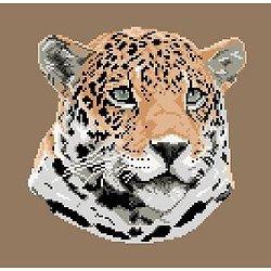 Jaguar diagramme noir et blanc .pdf
