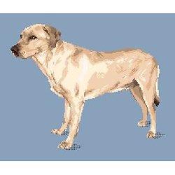 Labrador blond entier diagramme noir et blanc