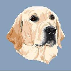 Labrador blond II diagramme noir et blanc