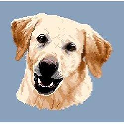 Labrador blond III diagramme couleur .pdf