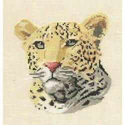 Léopard diagramme couleur