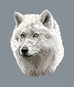 Loup blanc diagramme couleur