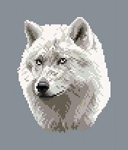 Loup blanc diagramme noir et blanc
