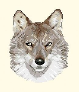 Loup diagramme couleur