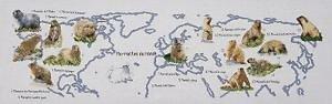 Marmottes du monde diagramme noir et blanc