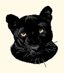 Panthère noire diagramme noir et blanc
