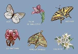 Papillons et fleurs de montagne diagramme couleur