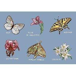 Papillons et fleurs de montagne diagramme noir et blanc