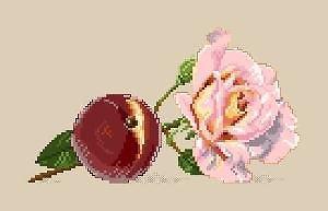 Pêche et rose diagramme couleur
