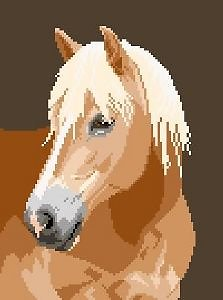 Poney haflinger diagramme couleur .pdf