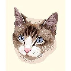 Portrait de chat diagramme noir et blanc