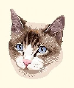 Portrait de chat diagramme noir et blanc .pdf