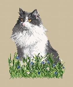 Portrait de chat III diagramme noir et blanc