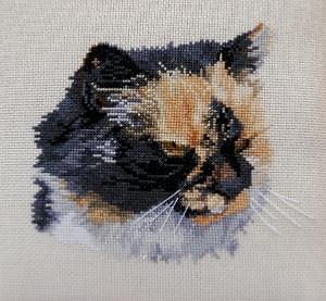 Portrait de chat V diagramme noir et blanc