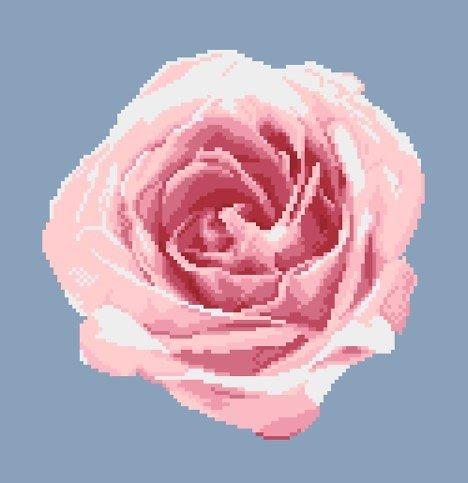 Portrait de rose XI diagramme noir et blanc .pdf