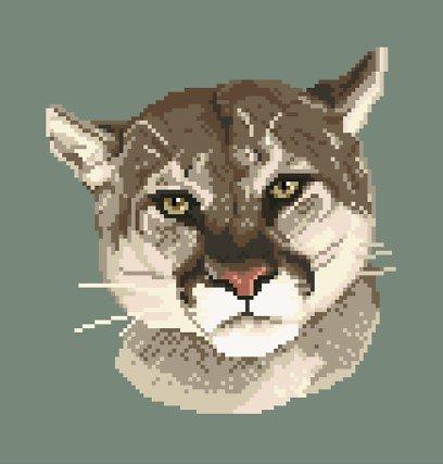 Puma diagramme couleur