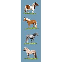 Races de poneys diagramme couleur .pdf