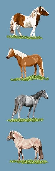 Races de poneys diagramme noir et blanc