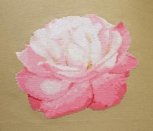 """Rose """"Bagatelle"""" diagramme noir et blanc"""