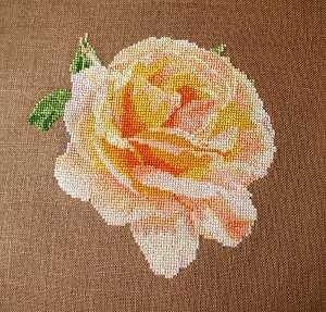 """Rose """"Constance"""" diagramme noir et blanc"""