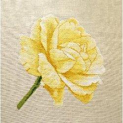 """Rose """"Douceur"""" diagramme couleur"""