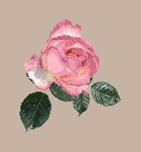 """Rose """"Souvenir"""" diagramme noir et blanc"""