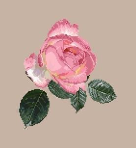 """Rose """"Souvenir"""" diagramme noir et blanc .pdf"""