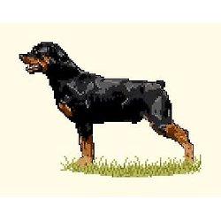Rottweiler diagramme noir et blanc