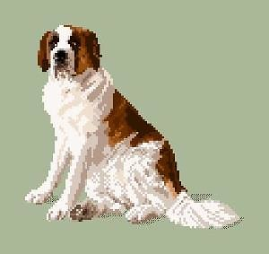 Saint-Bernard diagramme couleur .pdf