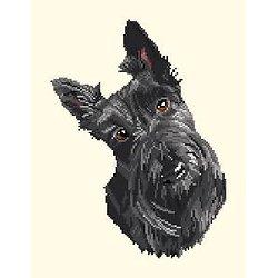 Scottish terrier diagramme noir et blanc