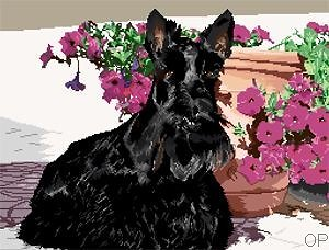 Scottish terrier III diagramme noir et blanc