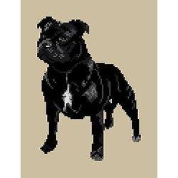 Staffordshire bull terrier diagramme noir et blanc .pdf