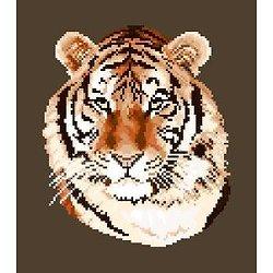 Tigre diagramme couleur .pdf