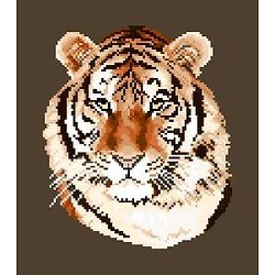 Tigre diagramme noir et blanc .pdf