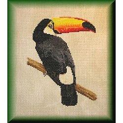 Toucan diagramme couleur
