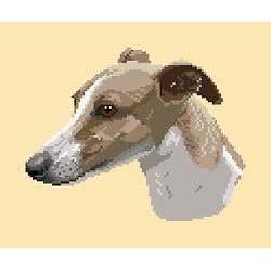 Whippet II diagramme couleur