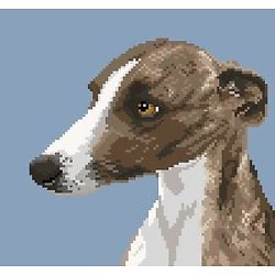 Whippet III diagramme couleur